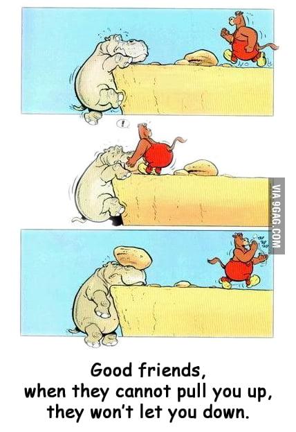 A True Friend!