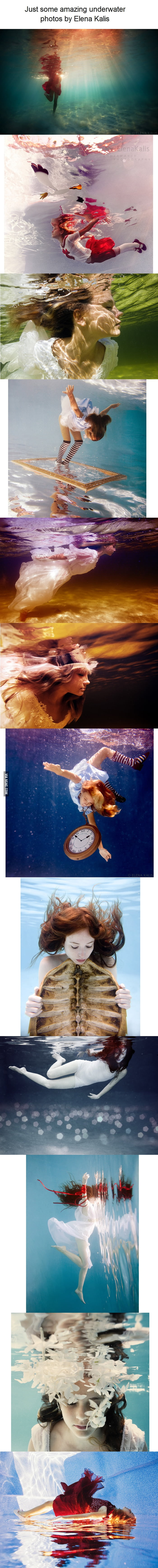 Some amazing underwater photos by Elena Kalis