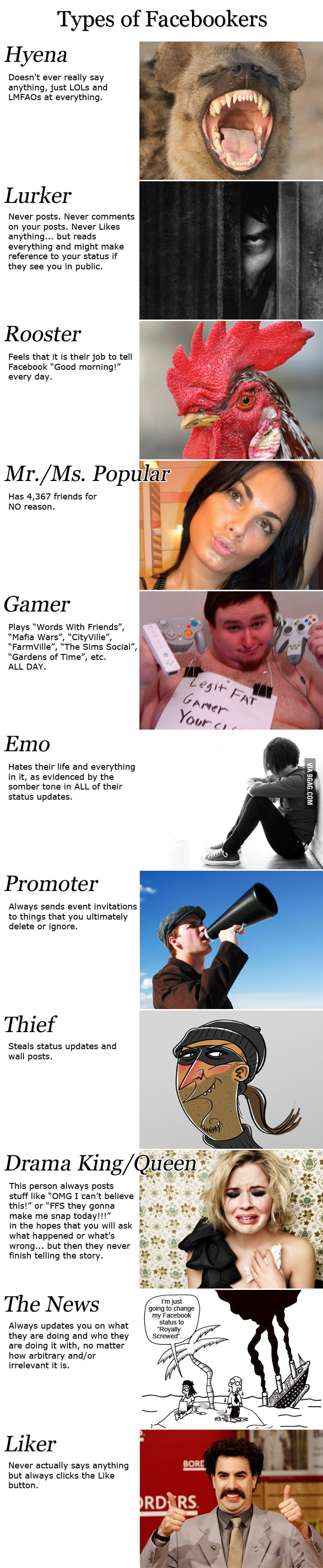 Types of Facebookers