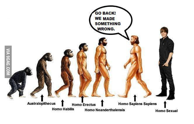 Theory of Evolution!