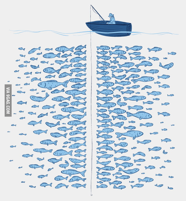 There Plenty Of Fish In The Sea
