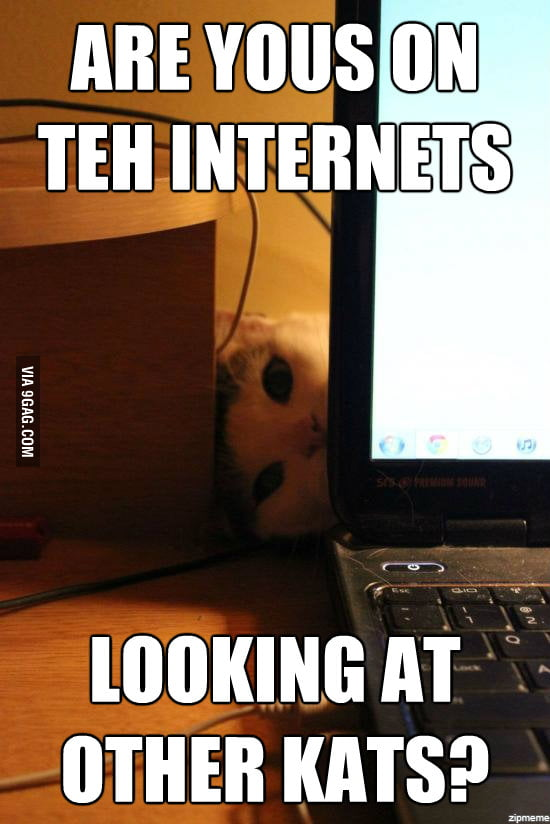 Overly Attached Cat!