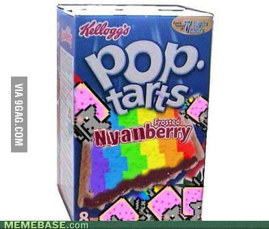 Nyan Cat pop tarts