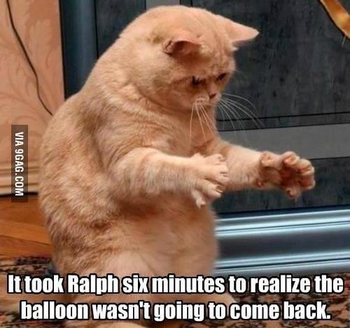 Poor Ralph...