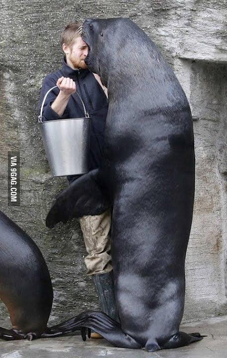 Human.. yummy!