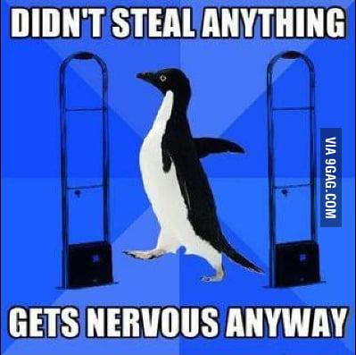 Socially Awkward Penguin goes shopping