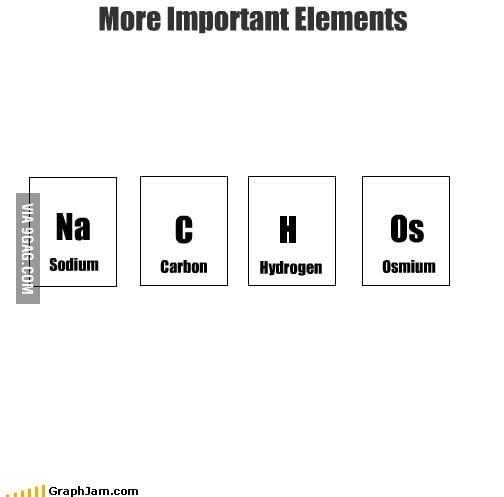 More Important Elements: NaCHOs