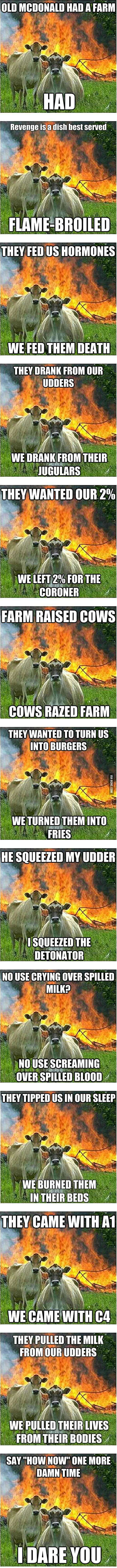 The best of Evil Cow