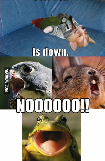 Star Fox is down