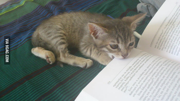 I really want to study, but she won't let me.
