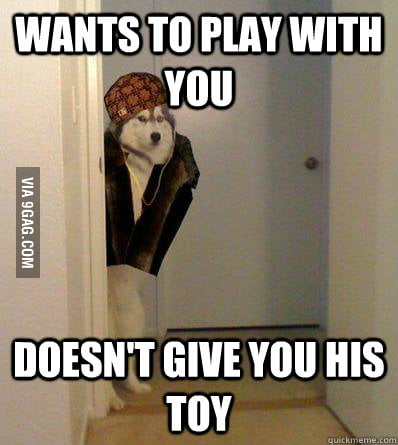 Everytime when I want to play with my dog...