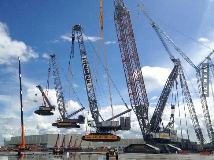 Crane-ception