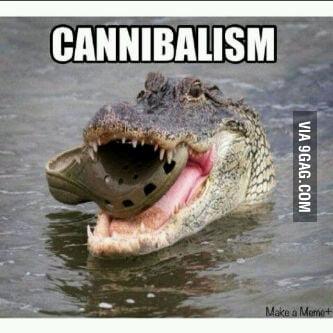 Cannibalism croc