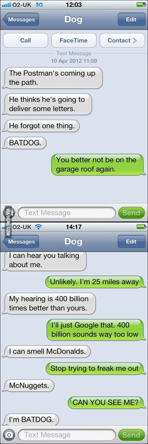 New texts from dog