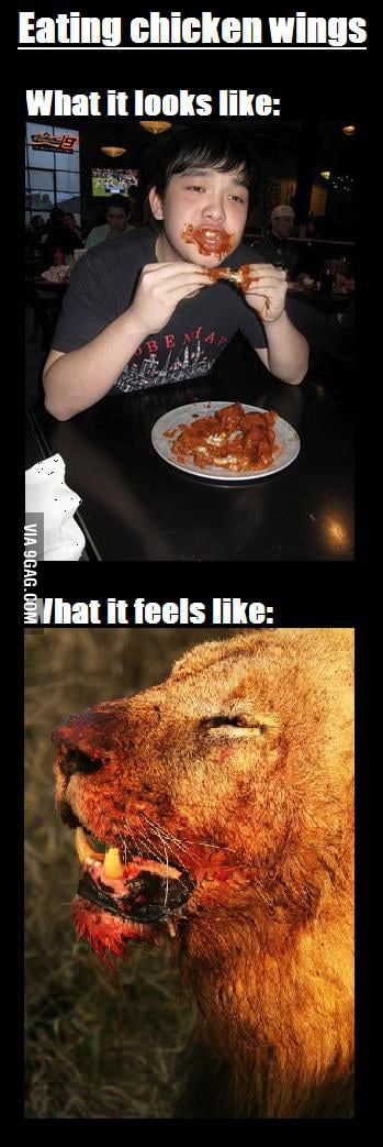 The truth about chicken wings