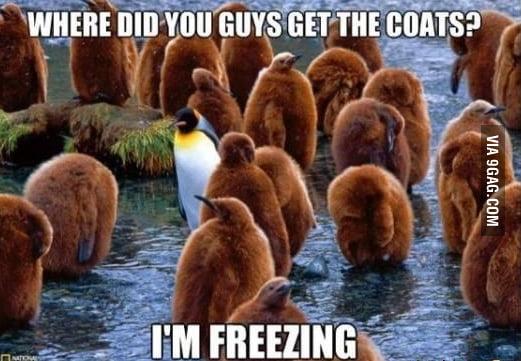 Need a coat!