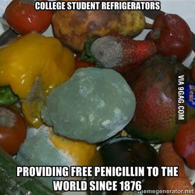College Student Refrigerators