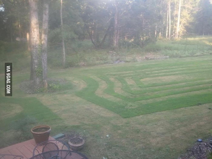 I say it's art, she says to mow it again.