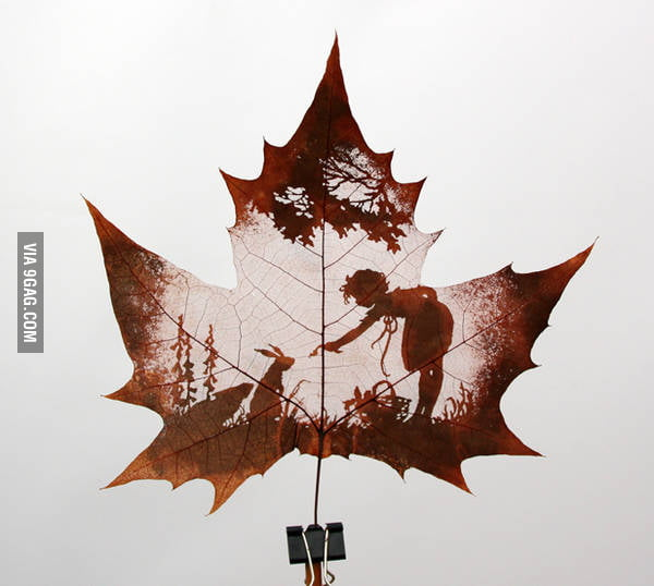 Awesome carving from a maple leaf.
