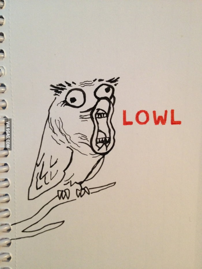 I think this is the funniest bird on earth: LOWL