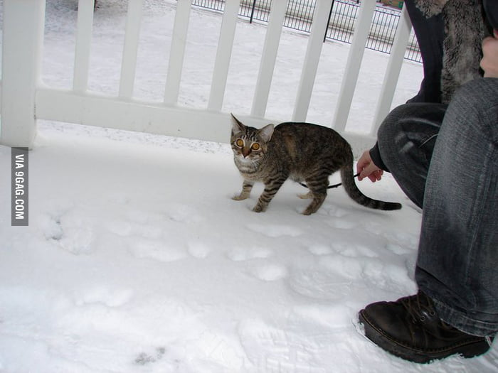 Her first time experiencing snow