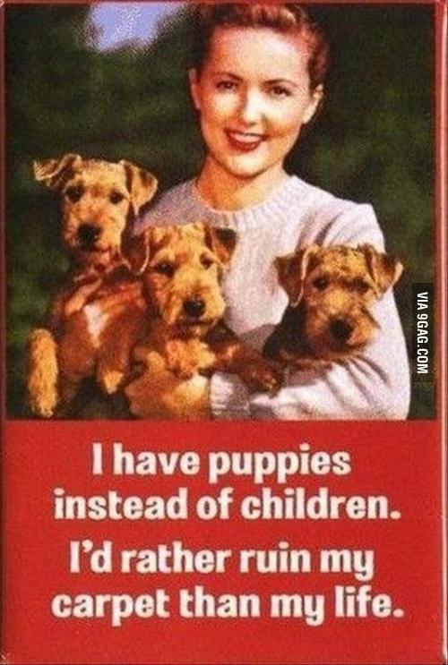 I have puppies instead of children