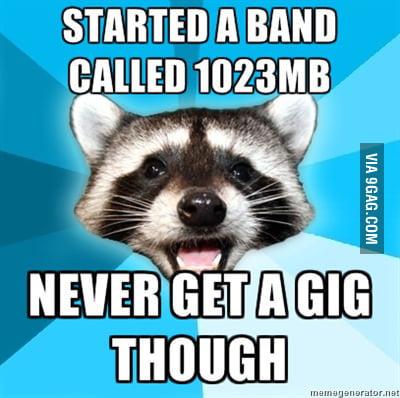 Lame Pun Raccoon starts a band