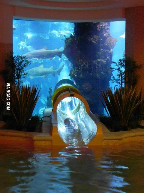 Aquarium Slide in Golden Nugget, Las Vegas