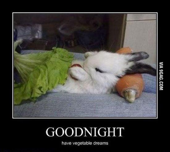 Have vegetable dreams