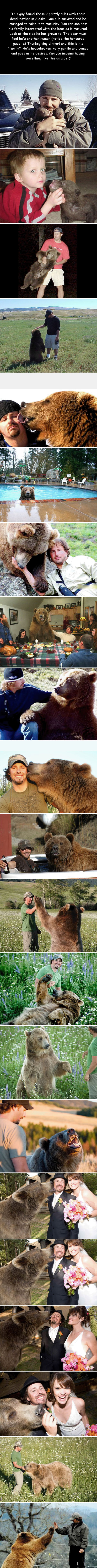 The story of a man and a bear