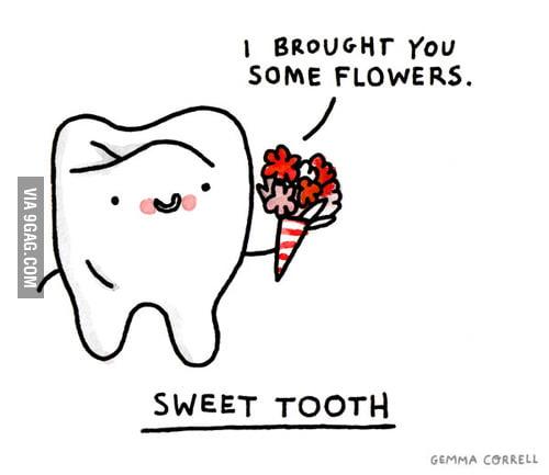 No cavities