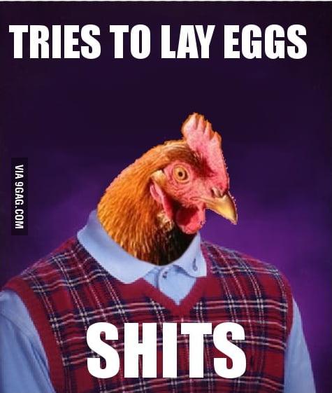Bad Luck Chicken