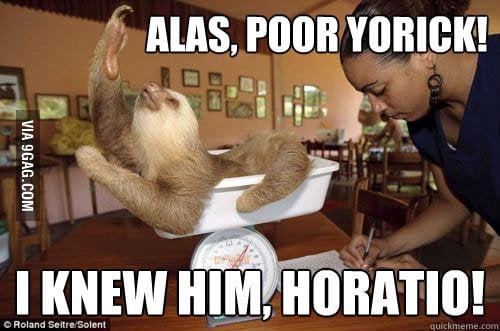 Shakespearean Sloth?
