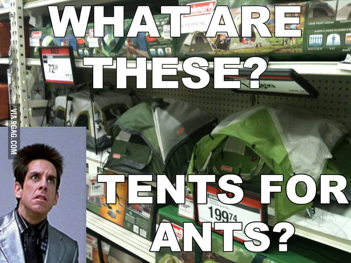 Every time I go into the tents aisle