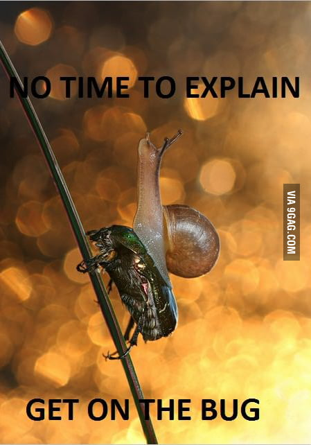 There Is No Time To Explain!