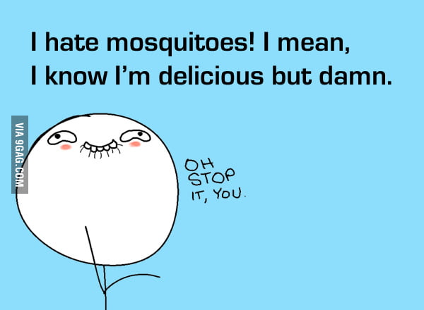 I know I'm delicous but damn you mosquitos