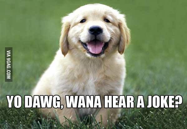 Humorist puppy is humorist