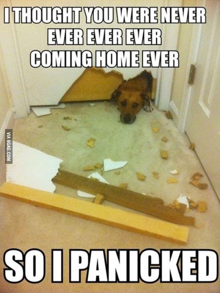 So I panicked...