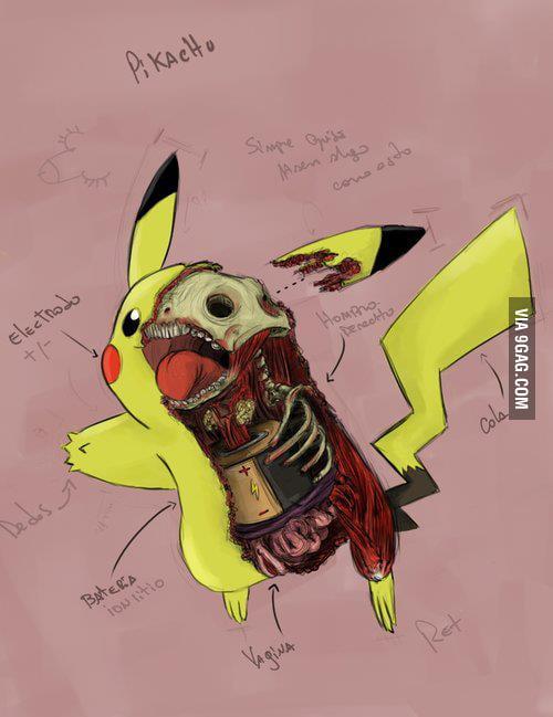 Anatomy Pikachu - 9GAG
