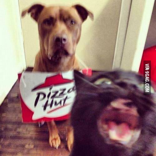 Oh My God! Pizza Hut!