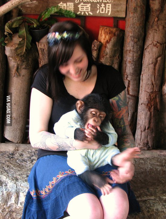 Hanging out with a baby chimp