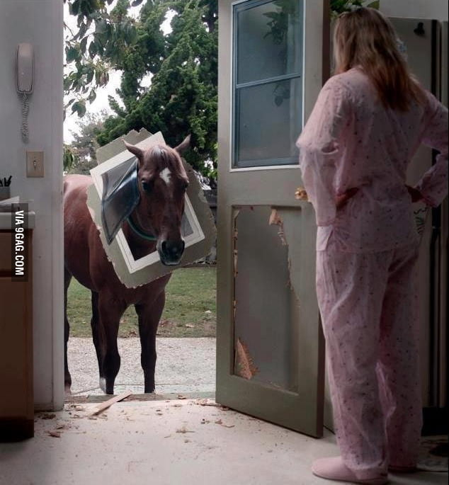 Sorry, your doorbell is broken.