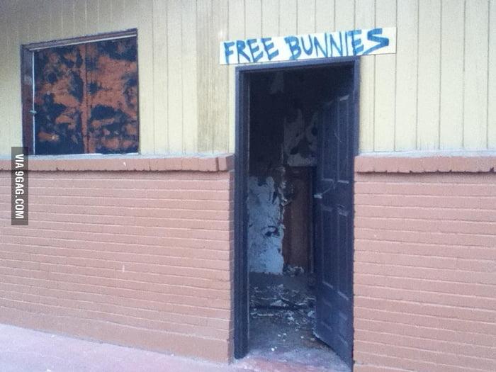 Bunnies?? I don't think so.