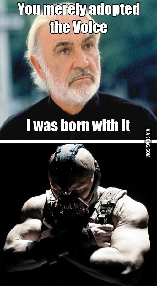 You merely adopted the voice...