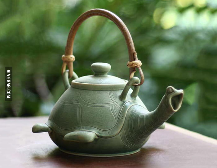 The tea must be hot, that's why the turtle is screaming.