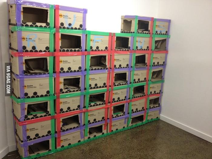A cat maze built by boxes.