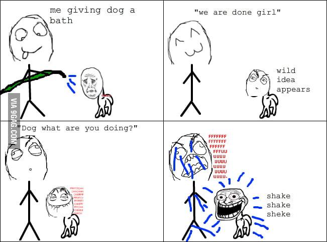 Why I hate bathing my dog