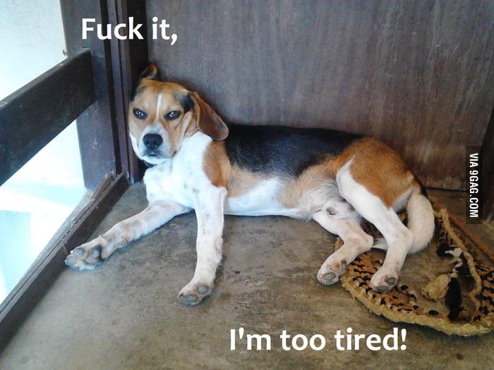 When I'm feeling lazy