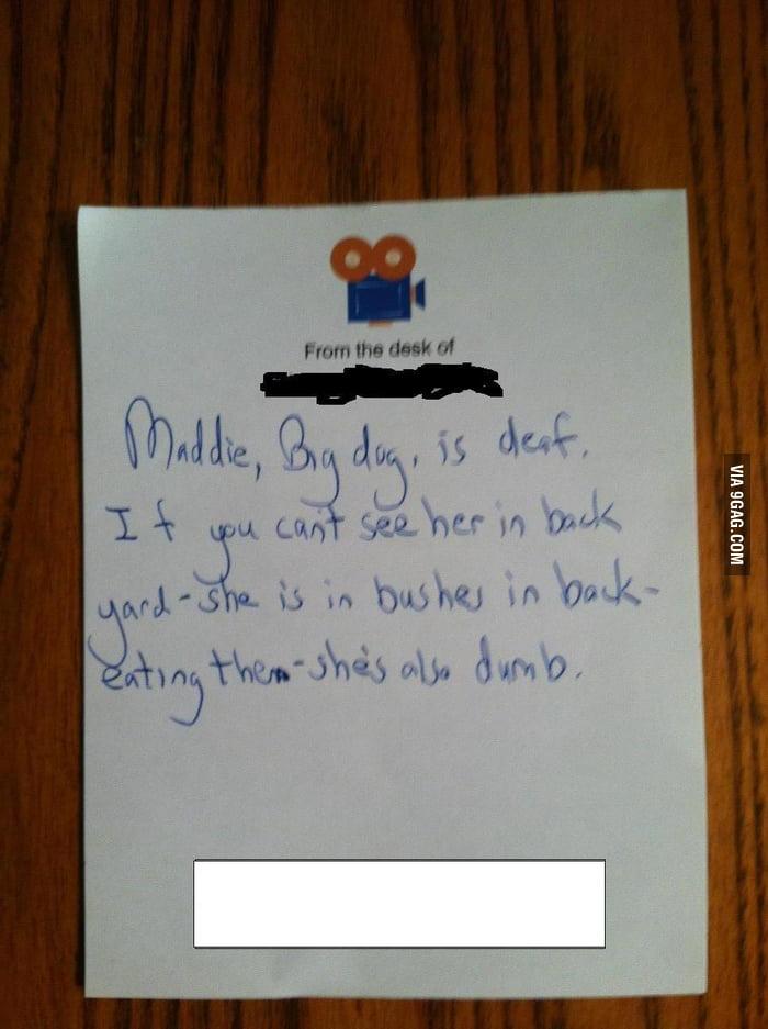 Dog sitting note.