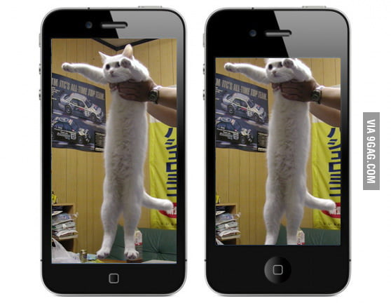 The difference between iPhone 4 and 5.